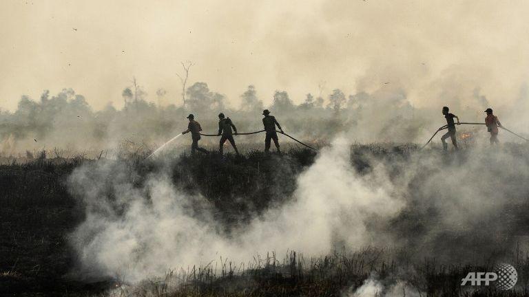 slash-and-burn-sumatra